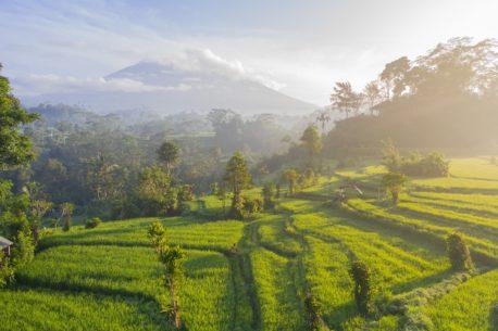 Bali senza confini visivi